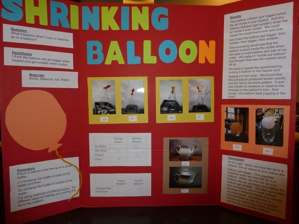 10 Cute Science Project Ideas 6Th Grade central school pto science fair good to know pinterest 79 2020