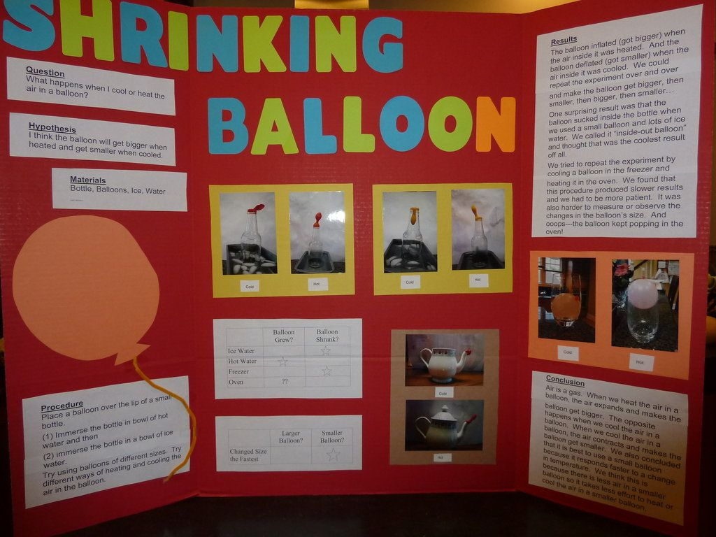 central school pto » science fair | good to know | science projects