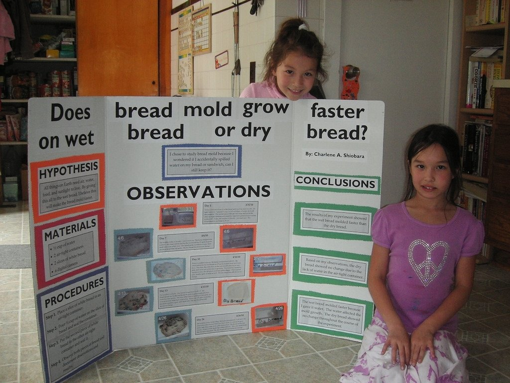 10 Attractive Fourth Grade Science Project Ideas charlies 4th grade science project heres charlie with he flickr 2020