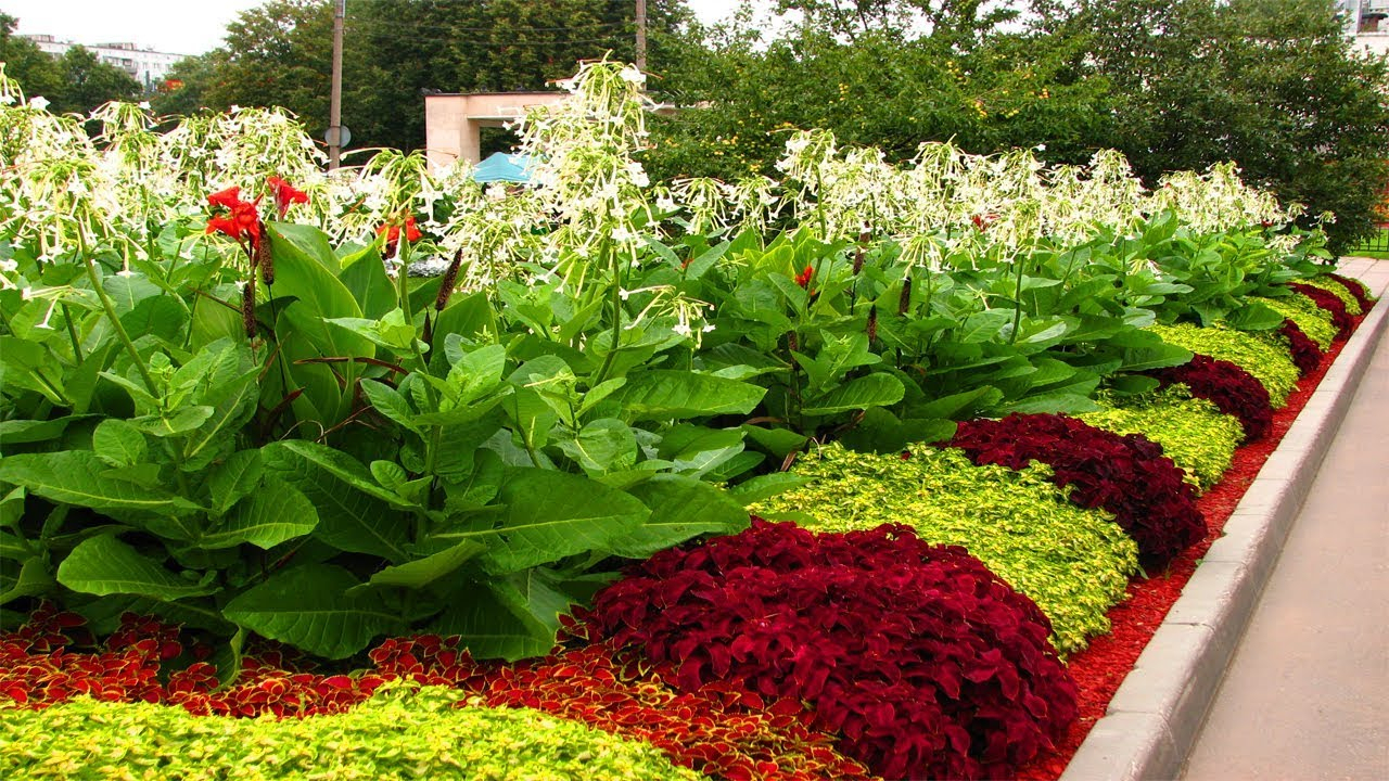 10 Lovely Flower Beds Ideas Front Yard charming flower bed ideas front of house homes with small flower 1