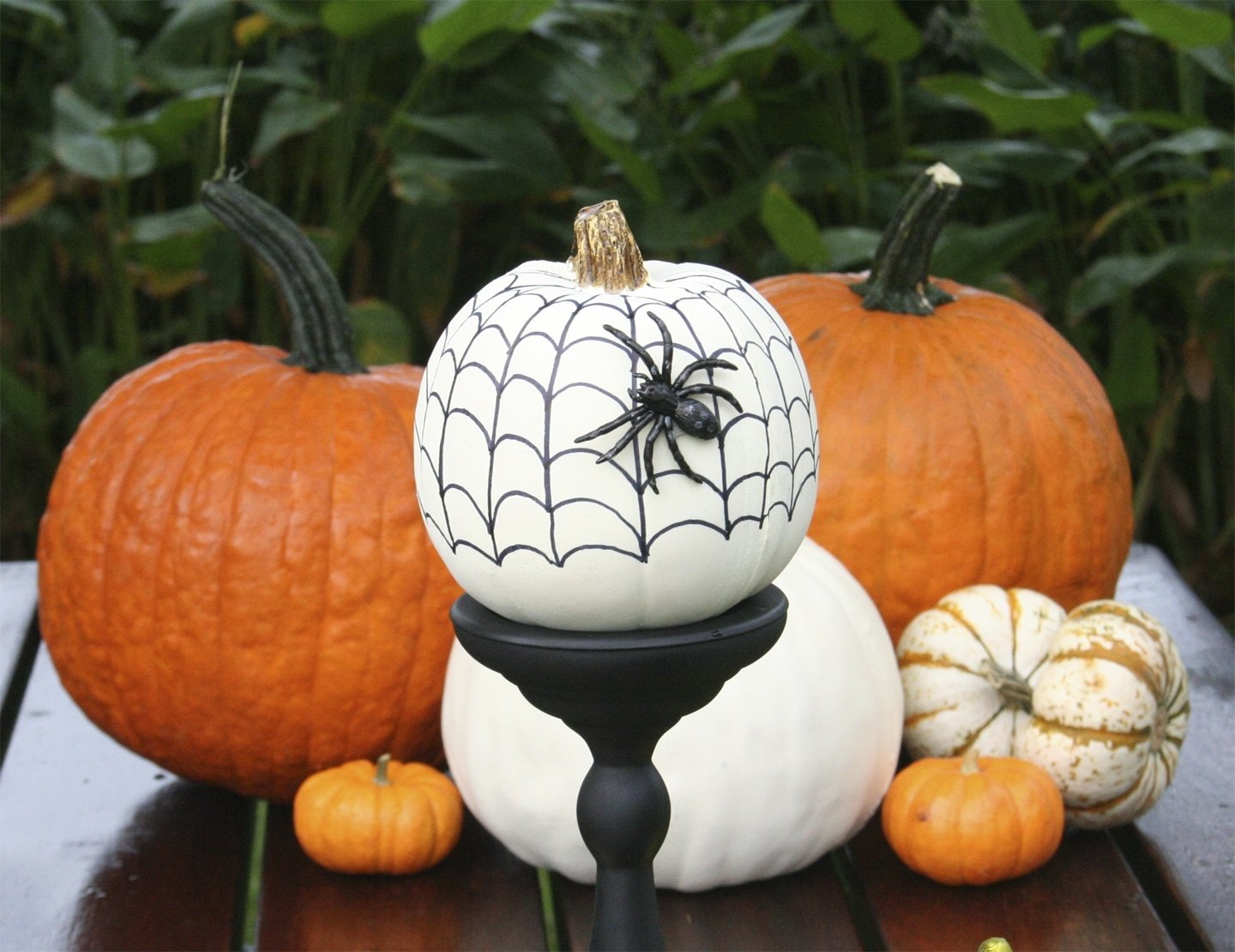 10 Beautiful Pumpkin Decorating Ideas No Carve chloes crafts no carve pumpkins for halloween ii celebrate