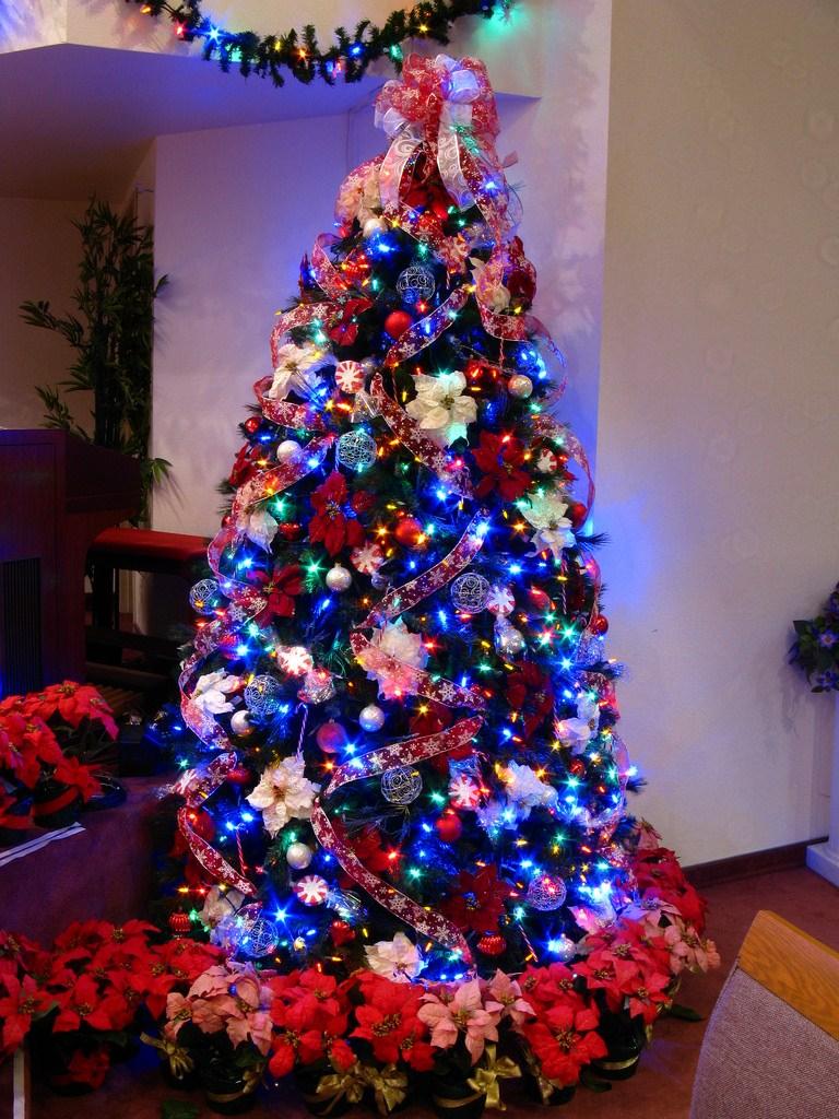 10 Elegant Christmas Tree Decorating Ideas With Multi Colored Lights christmas tree decorating ideas with multi colored lights empty design 2021