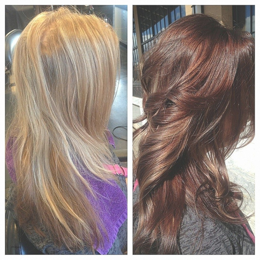 10 Spectacular Blonde And Auburn Hair Color Ideas cool hair shea moisture reddish blonde hair color awesome from 2020