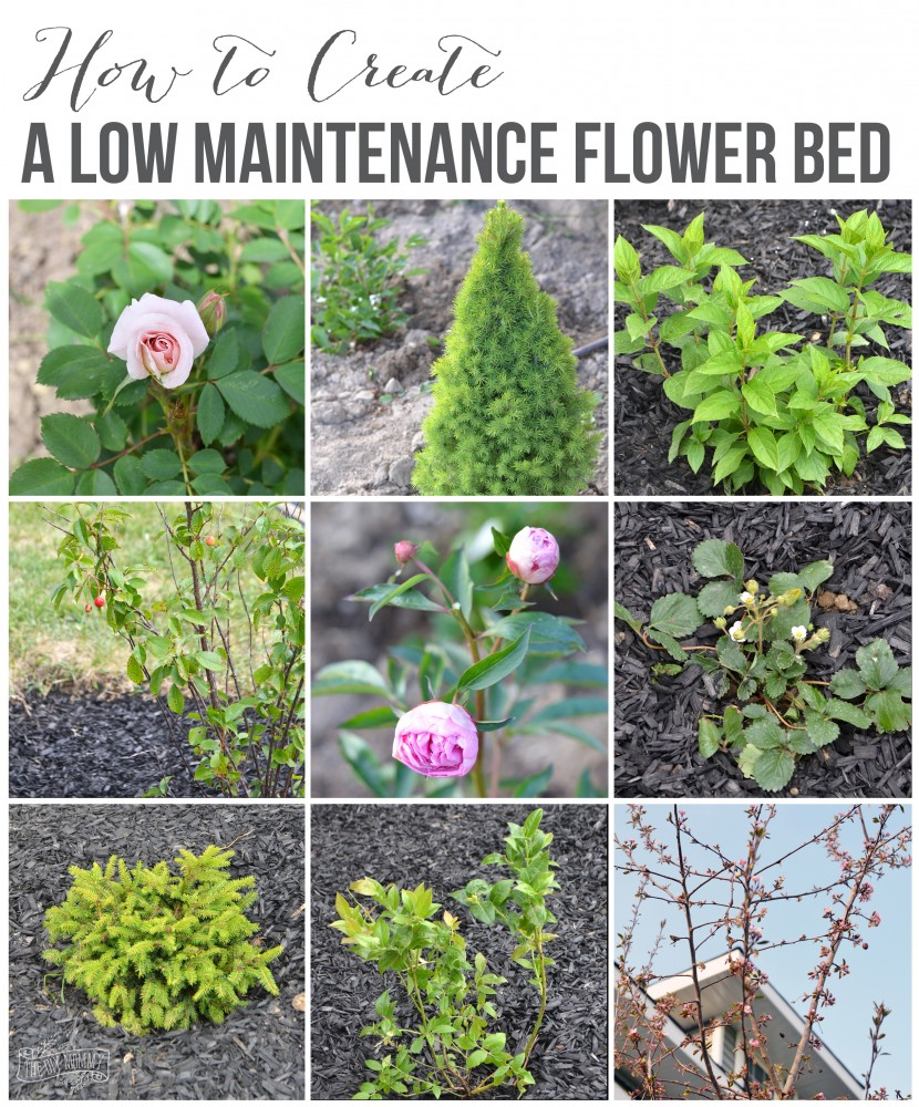 10 Lovely Flower Beds Ideas Front Yard create a low maintenance flower bed our front yard progress