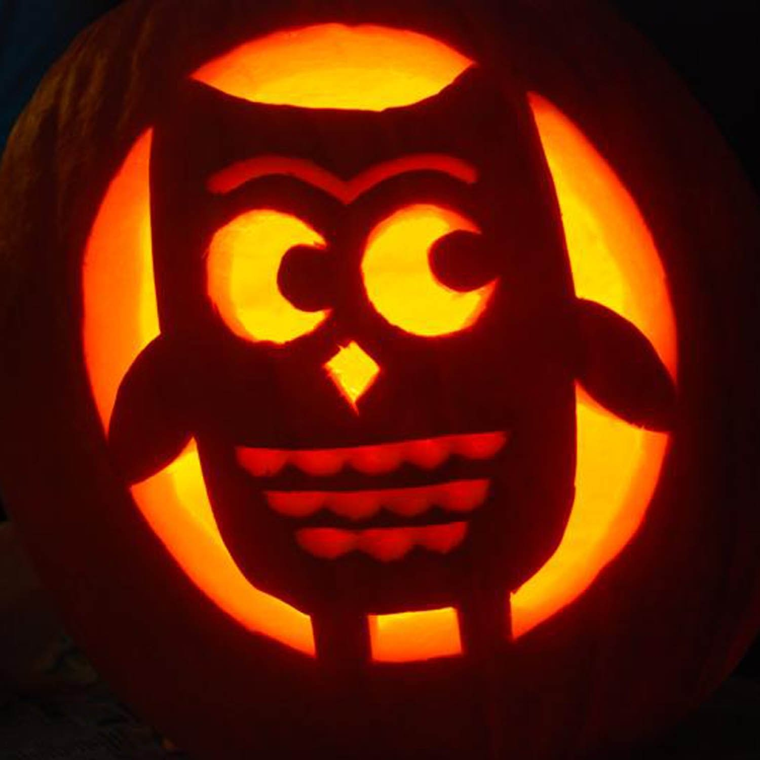 cute owl pumpkin : 10 cute pumpkin carving patterns ideas