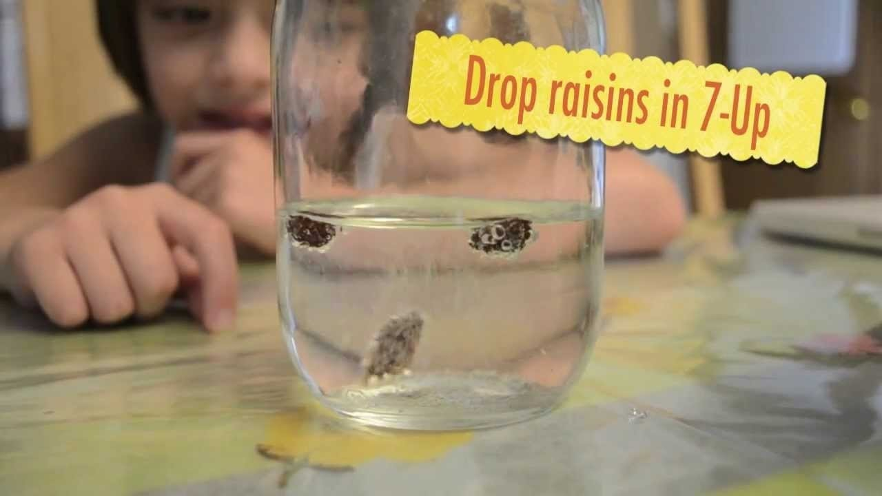 10 Cute Science Project Ideas For 1St Graders dancing raisins 2nd grade science experiment youtube 2 2020