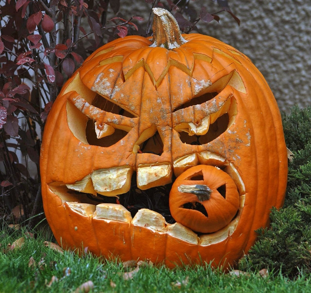 10 Best Cute Couple Pumpkin Carving Ideas decoration minimalist funny large teeth couple pumpkin carving 2020