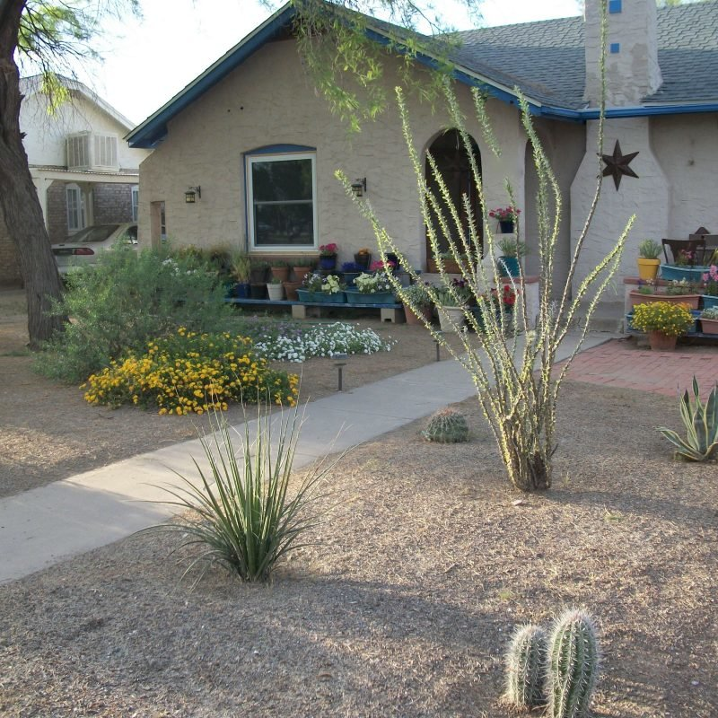 10 Most Popular Desert Landscaping Ideas For Front Yard 2019