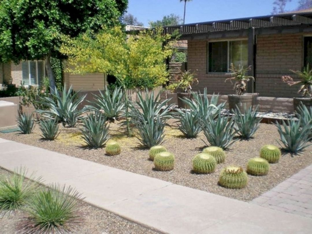 10 Most Popular Desert Landscaping Ideas For Front Yard design front yard desert landscaping ideas pictures 24 spaces 2021