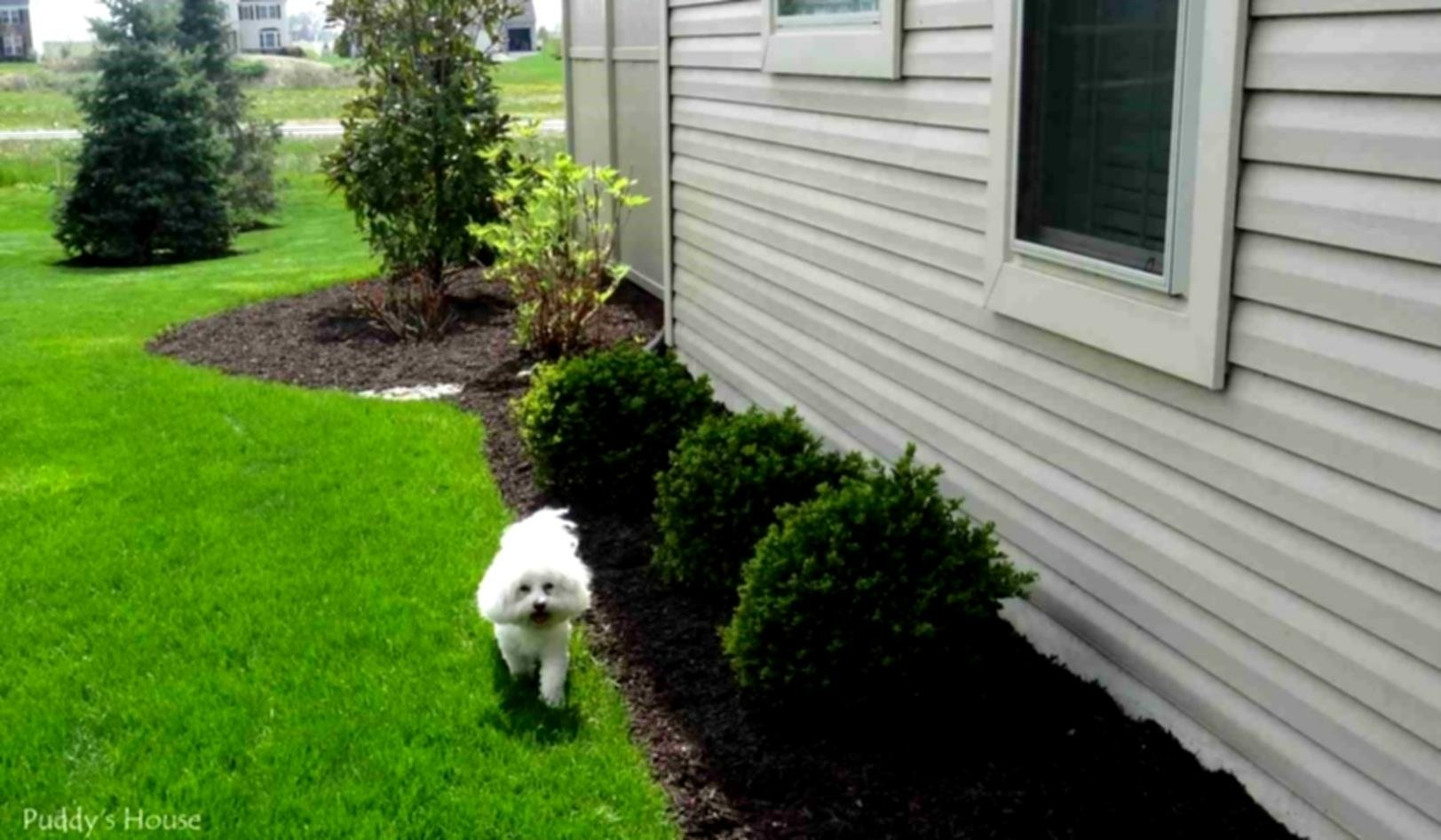 10 Famous Landscape Ideas On A Budget diy landscaping ideas on a budget nyapu rocks amys office 1 2021