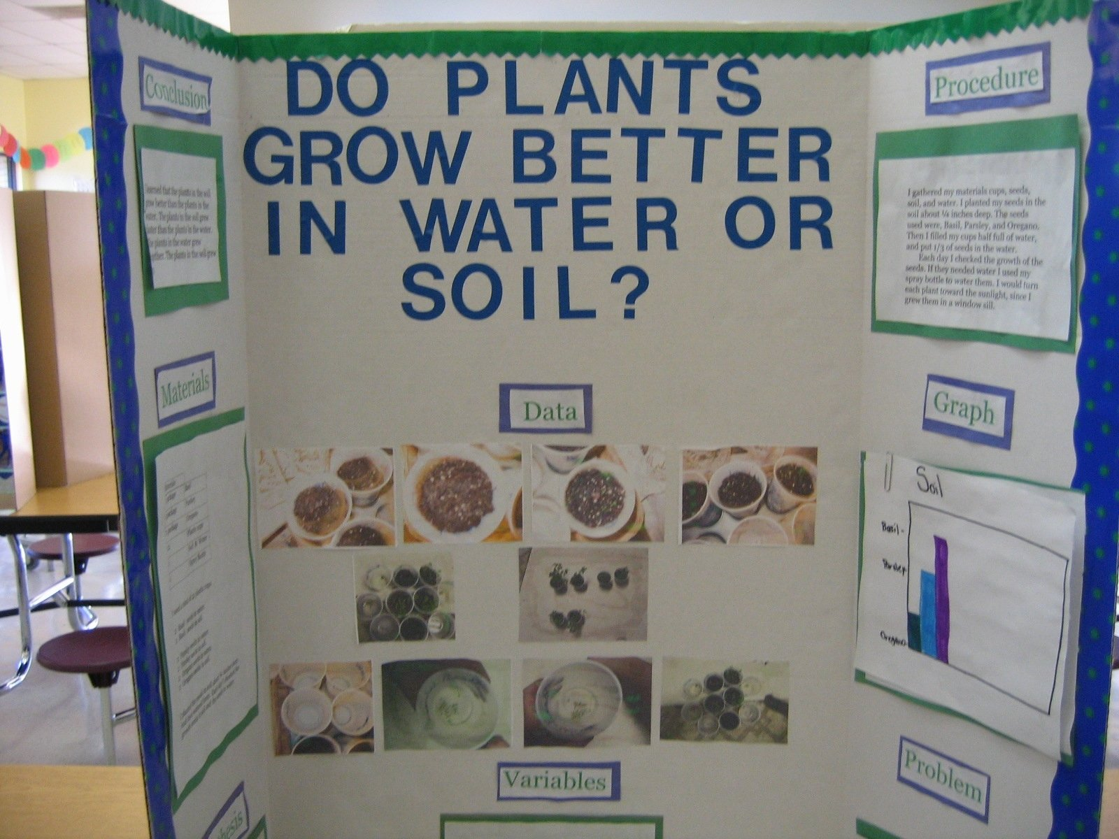 10 Fantastic Plant Science Fair Project Ideas do plants grow better in water or soil 2020