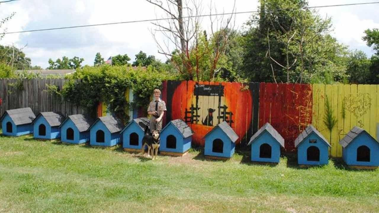 10 Fashionable Ideas For Eagle Scout Projects eagle scout helps out animal rescue for project abc13 2020
