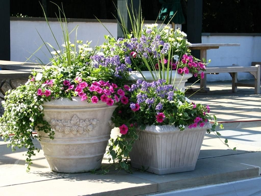 10 Nice Flower Pot Ideas For Patio easy flower pot ideas for garden home designs lovely flowers and 2020