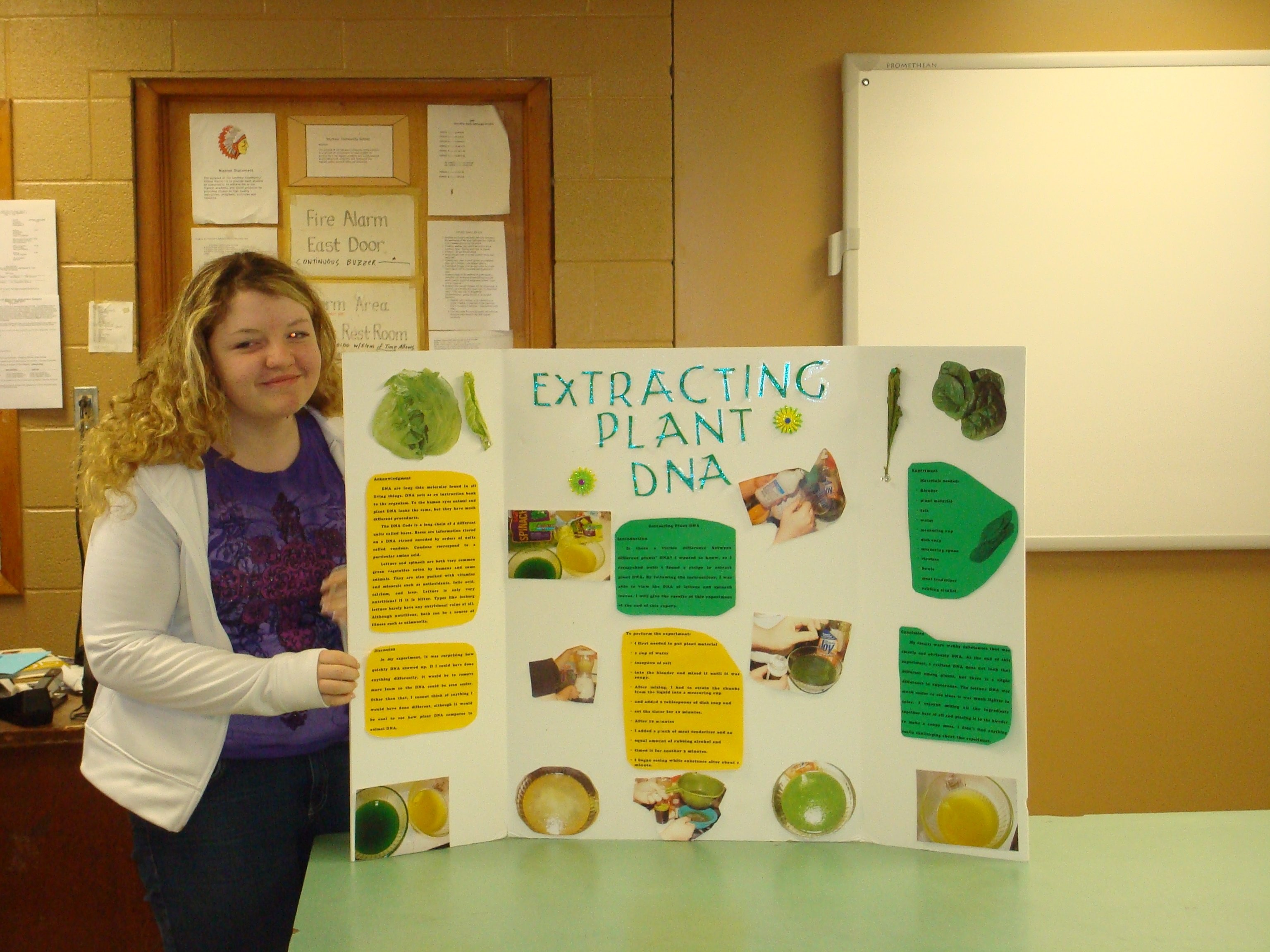 10 Unique 4Th Grade Science Experiment Ideas easy science fair projects for 3rd graders college paper help 11 2020