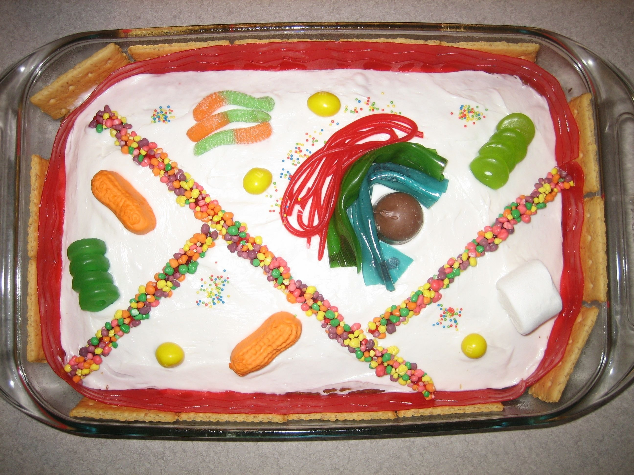 10 Ideal Edible Plant Cell Project Ideas edible plant cell for the next time i have to do this project for 2020