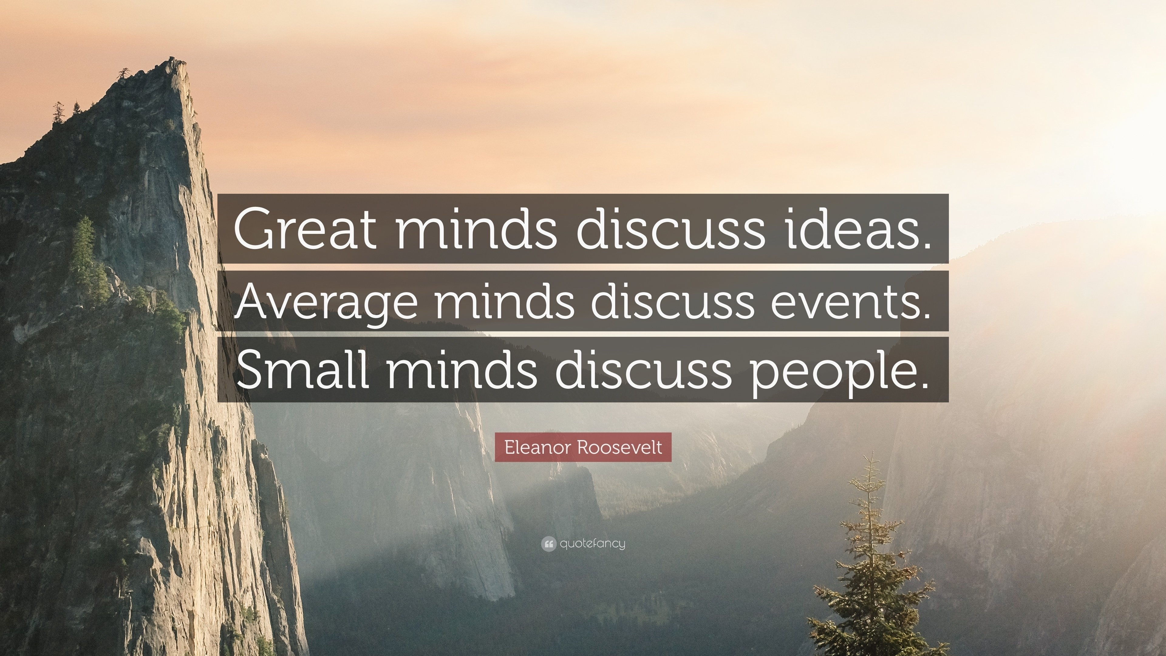 "eleanor roosevelt quote: ""great minds discuss ideas. average minds"