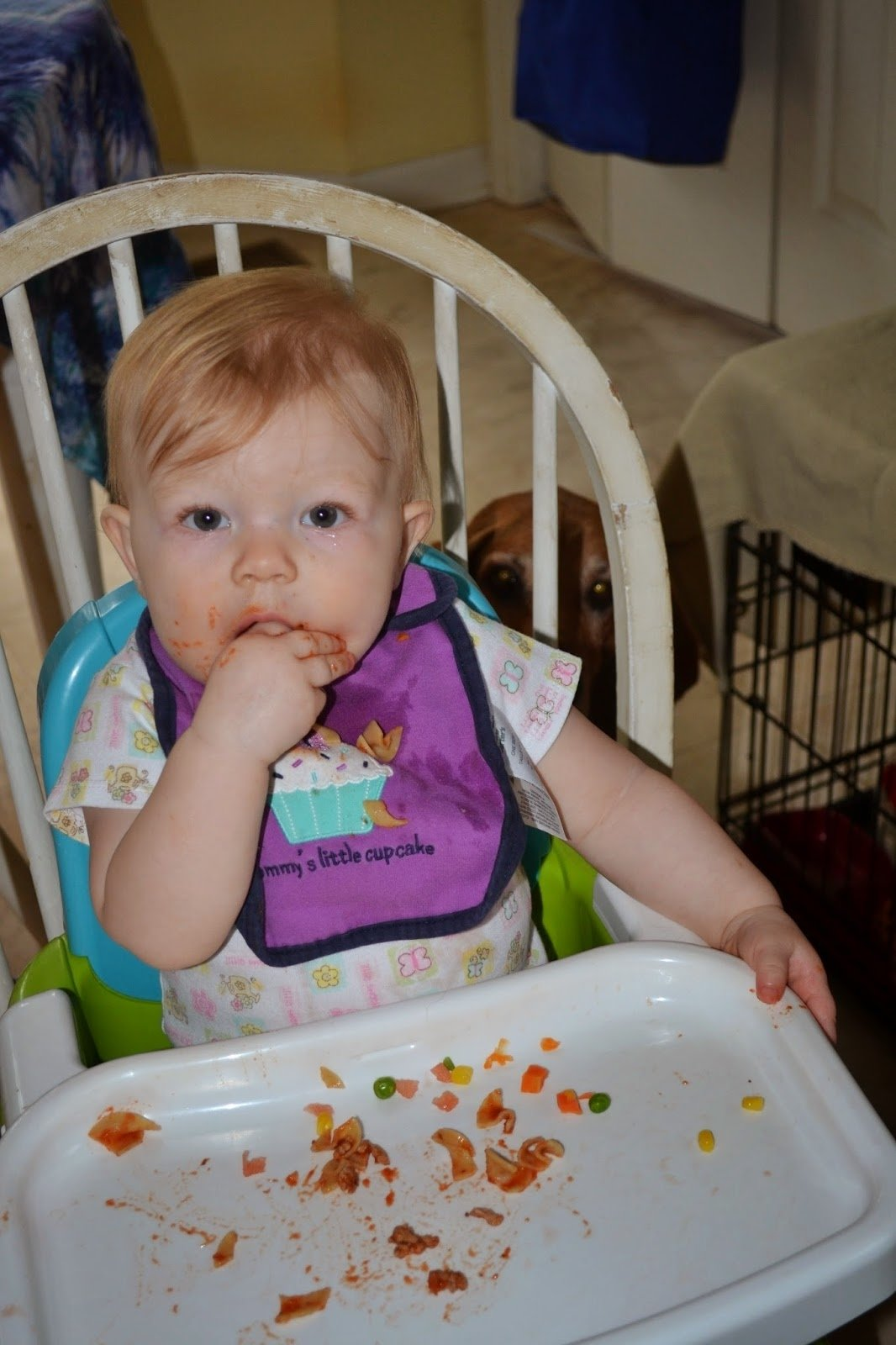10 Stylish 9 Month Old Photo Ideas finger foods for an 11 month old meal ideas 2020