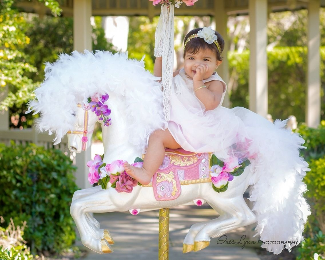 10 Fabulous 1St Birthday Photo Shoot Ideas first birthday photography first birthday photo shoot ideas baby 1 2020