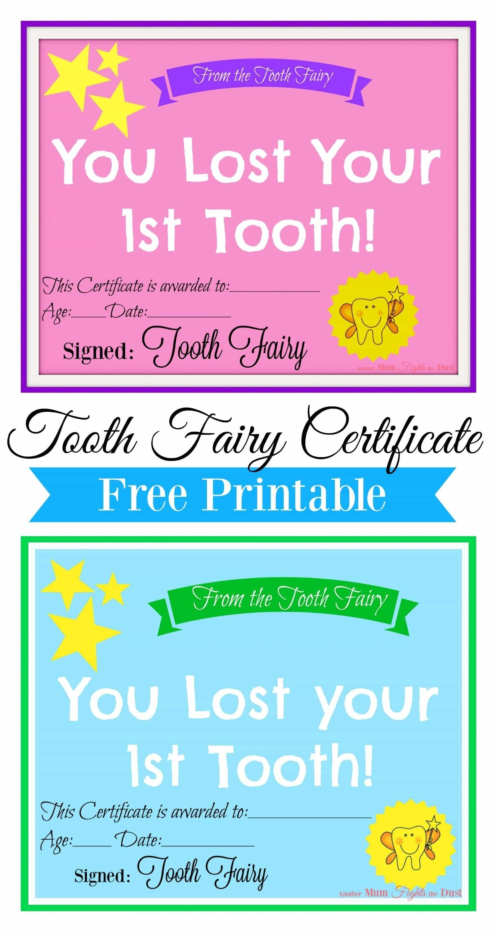 10 Elegant Tooth Fairy Ideas For First Tooth free printable tooth fairy certificate tooth fairy certificate 2020