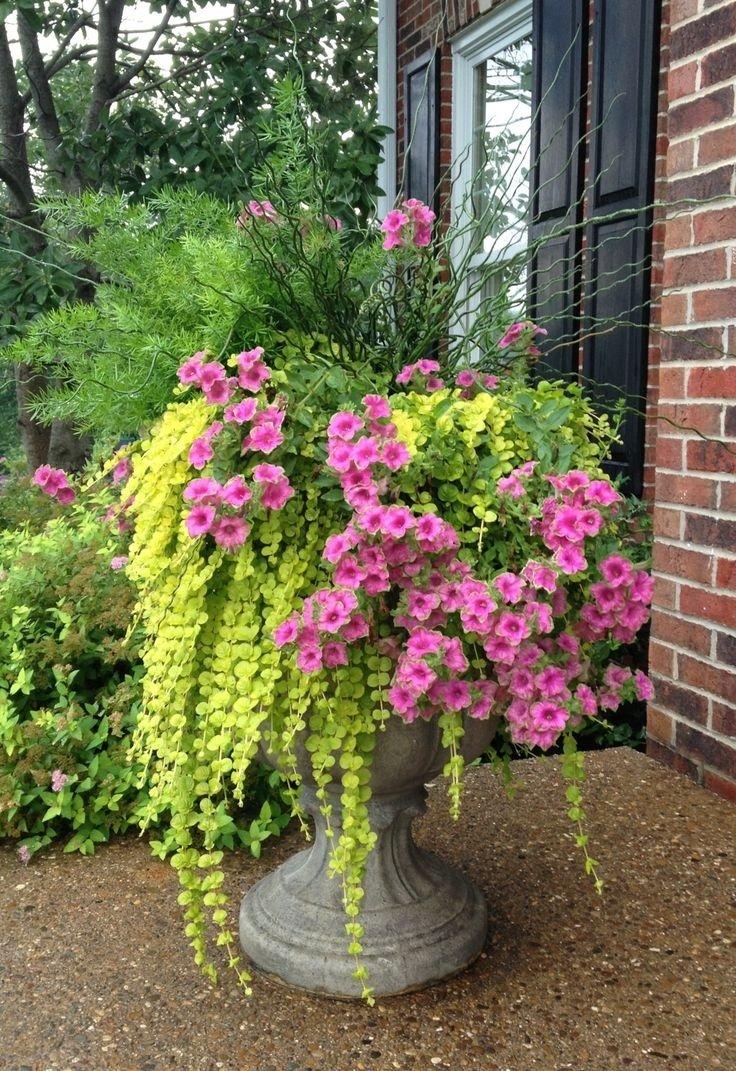 10 Fashionable Flower Pot Ideas For Front Porch front porch gorgeous front porch decoration with big grey pedestal 2021