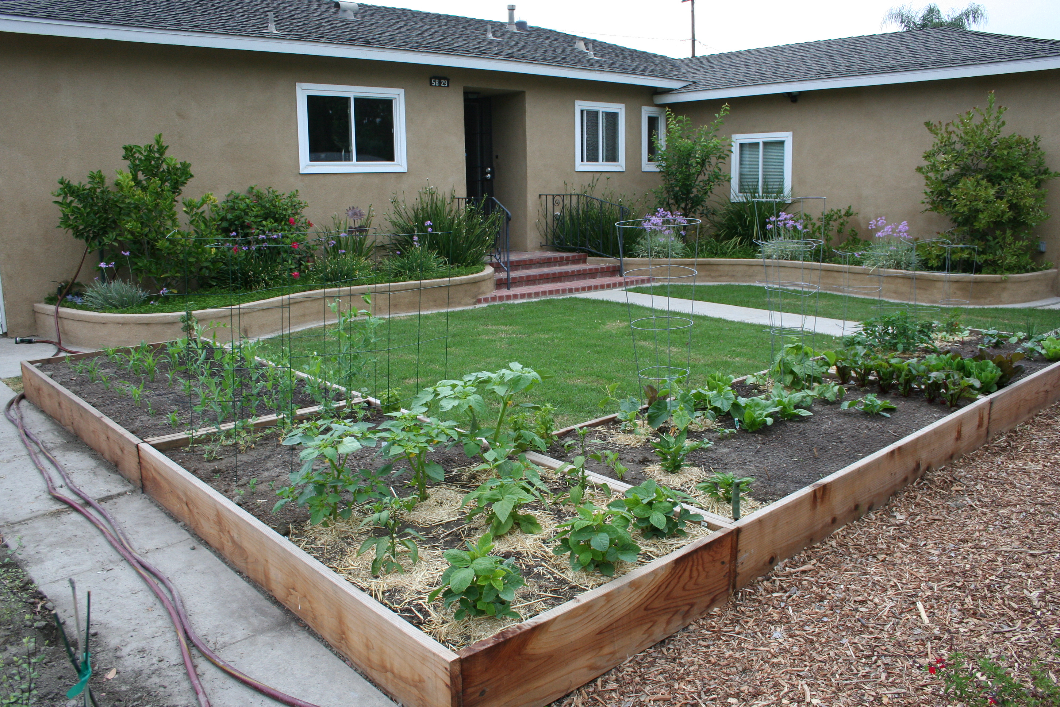 10 Great Front Yard Vegetable Garden Ideas 2020