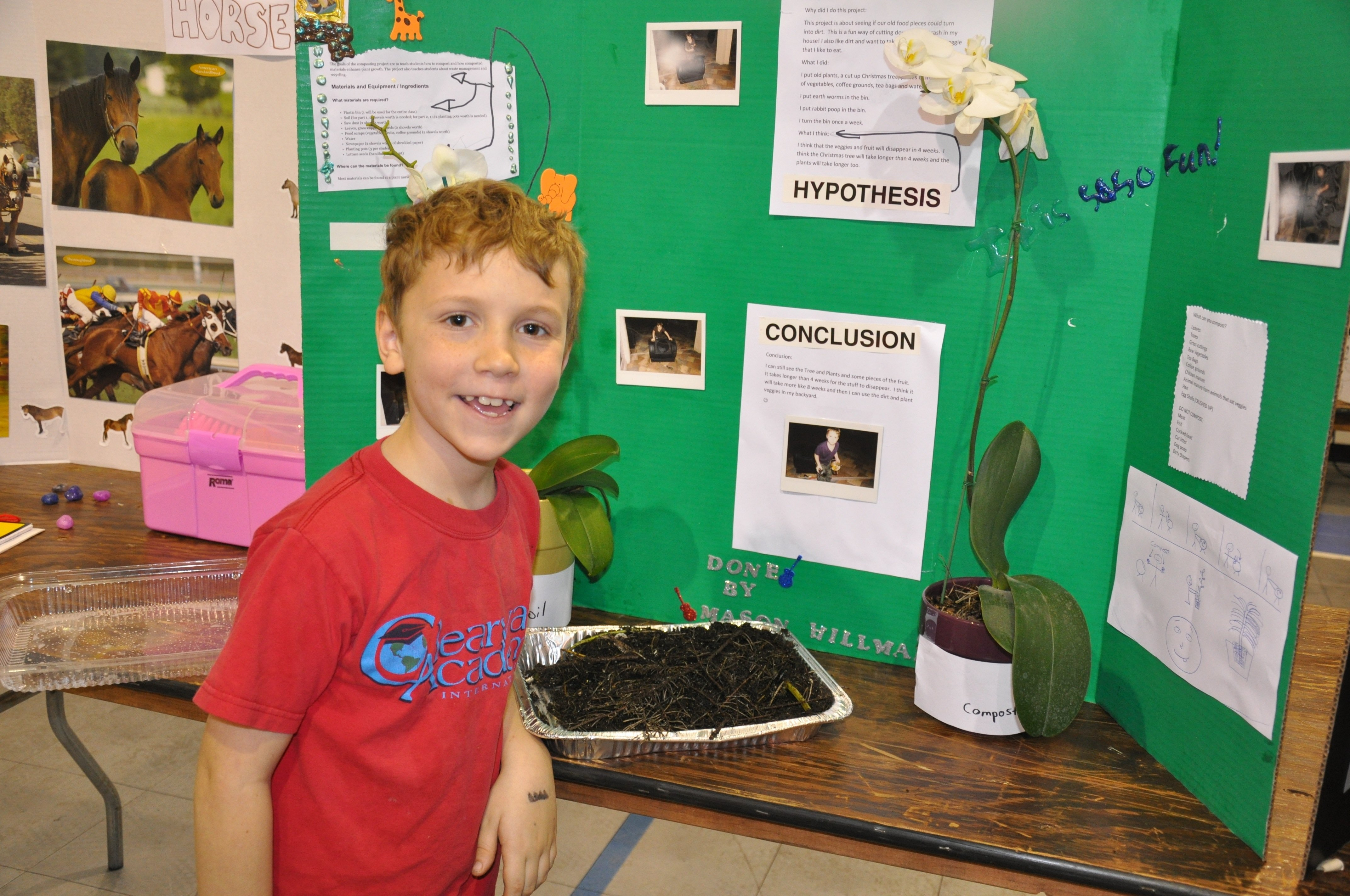 10 Stunning 12Th Grade Science Fair Project Ideas fun 8th grade science fair projects custom paper writing service 3 2020