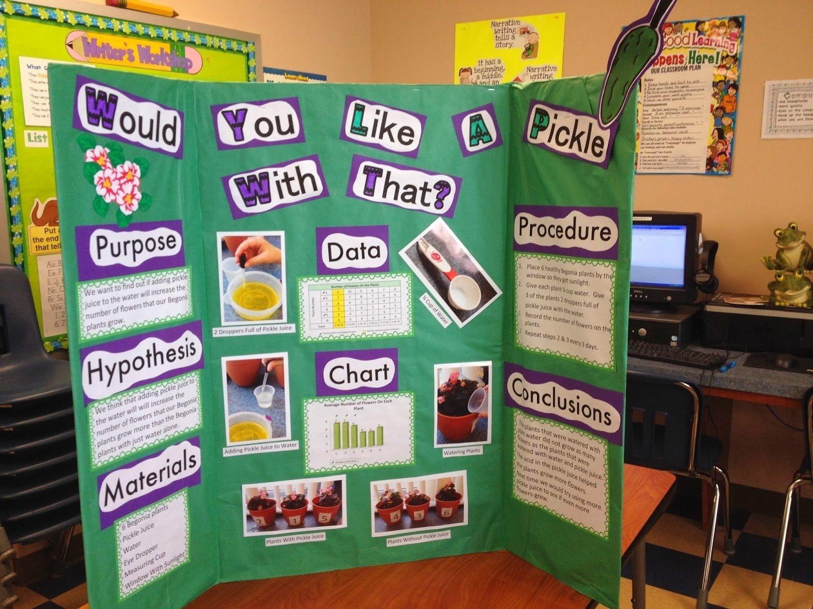 10 Beautiful Good Ideas For Science Fair fun and easy first grade ideas 1st grade science fair winner 6 2020