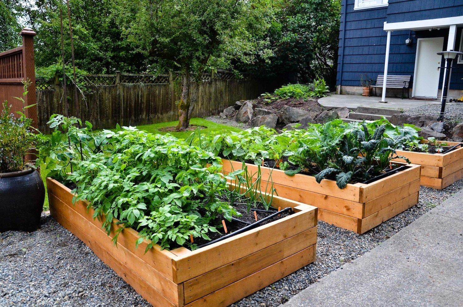 10 Unique Raised Bed Garden Design Ideas garden profile raised beds after planting 2053 latest decoration 2021