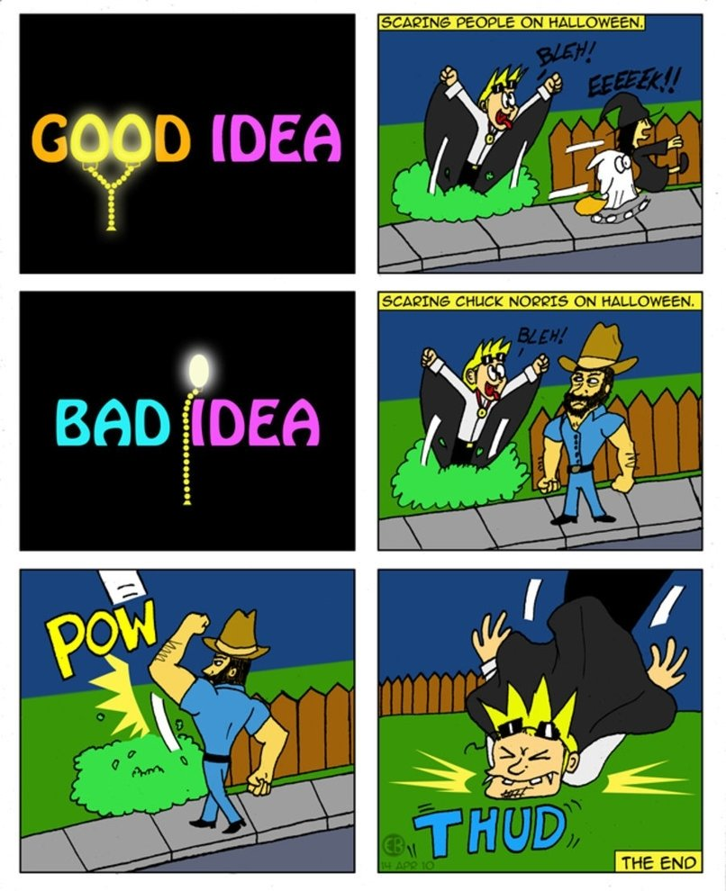 10 Elegant Good Idea Bad Idea Animaniacs good idea bad idea 2cartoon eric on deviantart 1