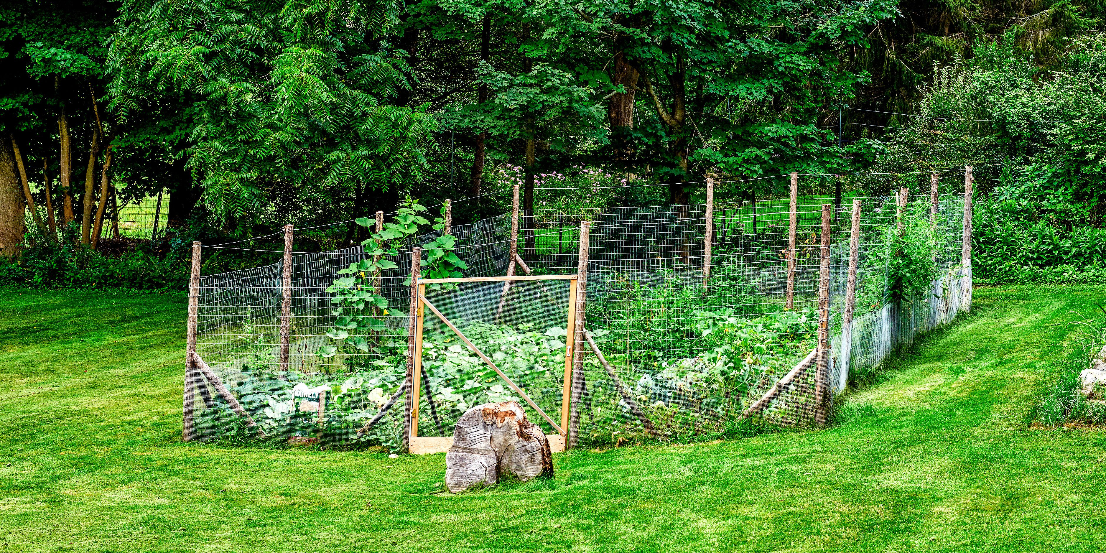 10 Fantastic Garden Fence Ideas To Keep Deer Out great garden fence ideas for 2017 how to build a garden fence 2020