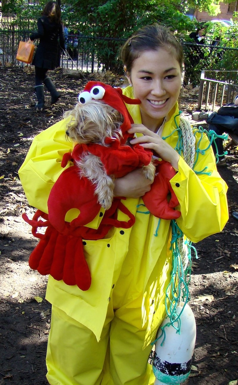 halloween owner and dog costumes - the ultimate couple's costume