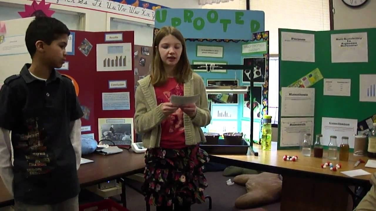 10 Most Popular Gymnastics Science Fair Project Ideas hannahs fourth grade science fair presentation youtube