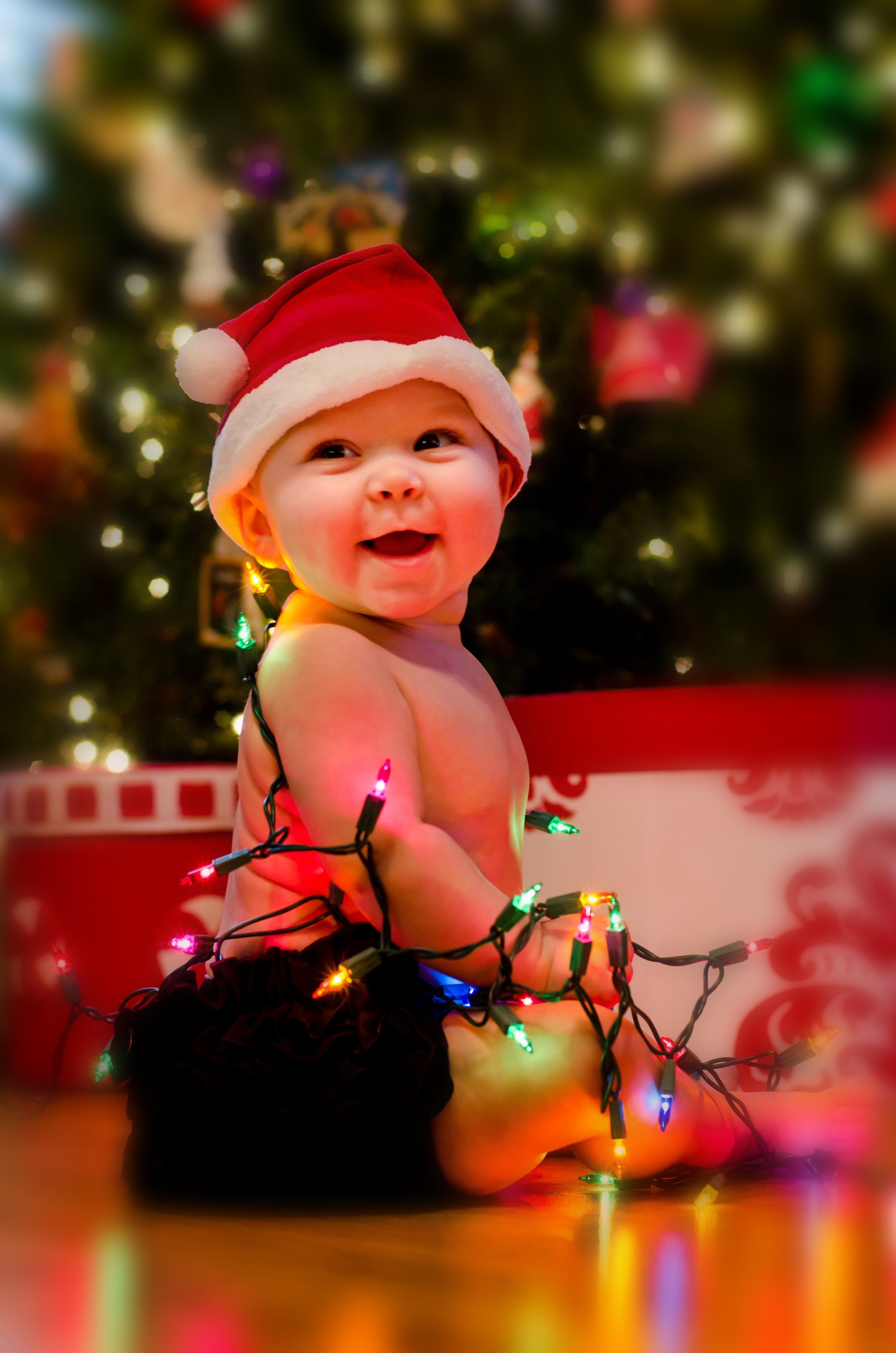 10 Gorgeous Christmas Picture Ideas For Babies happy christmas baby elmore photography 2020
