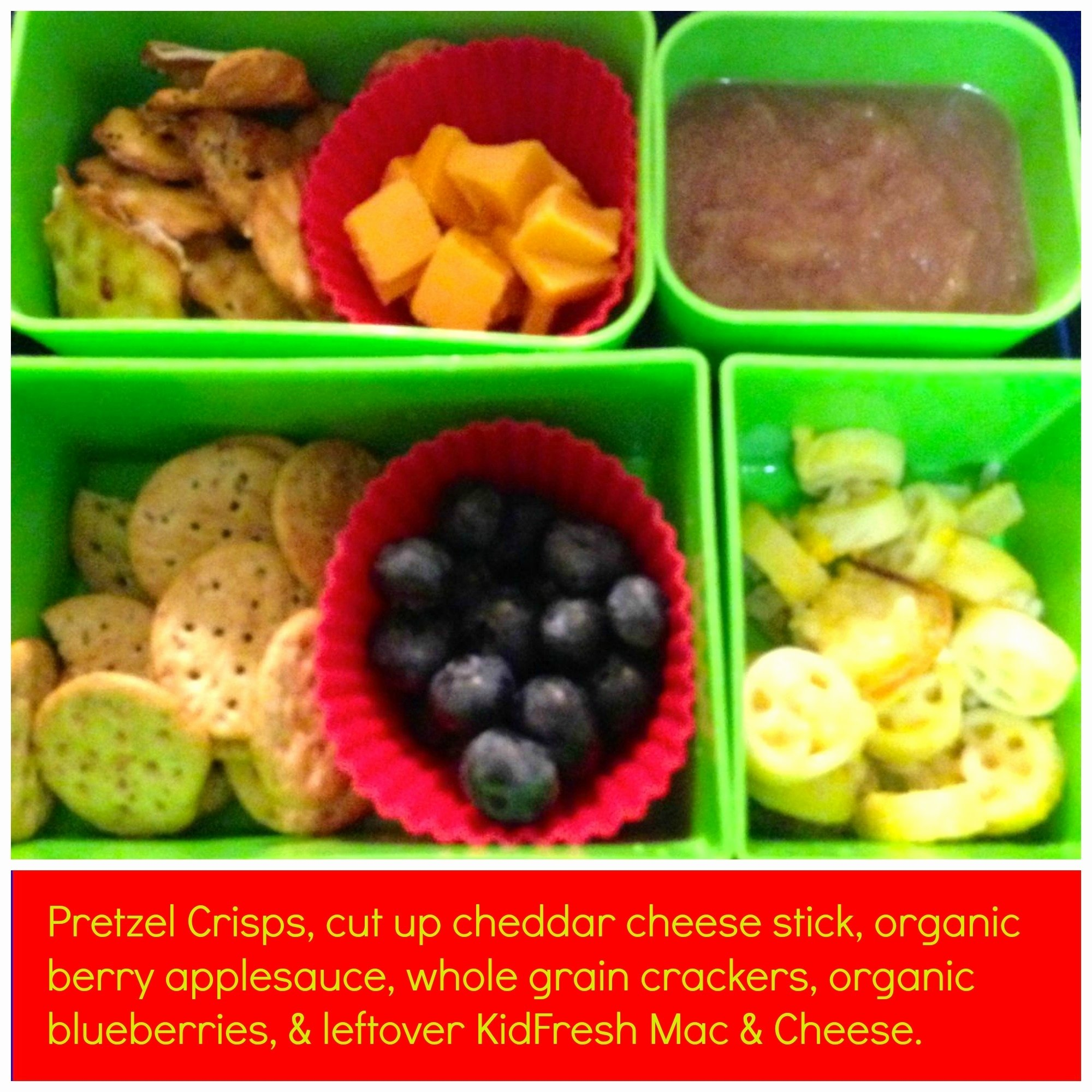 10 Nice Lunch Ideas For Picky Toddlers healthy recipes for picky eaters best of back to school lunch ideas