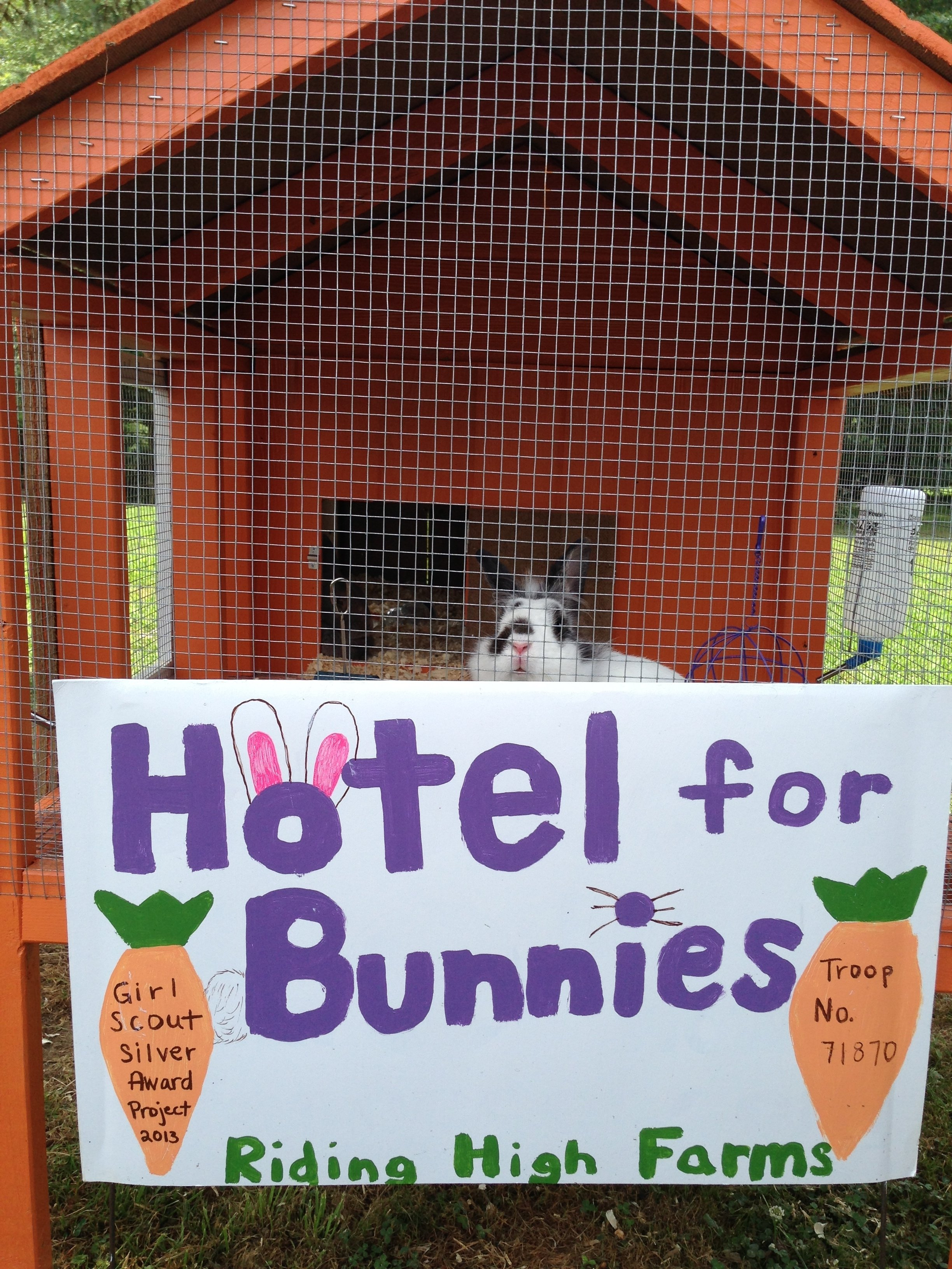 10 Awesome Girl Scouts Silver Award Ideas hotel for bunnies a safe haven for our fluffy friends 2021