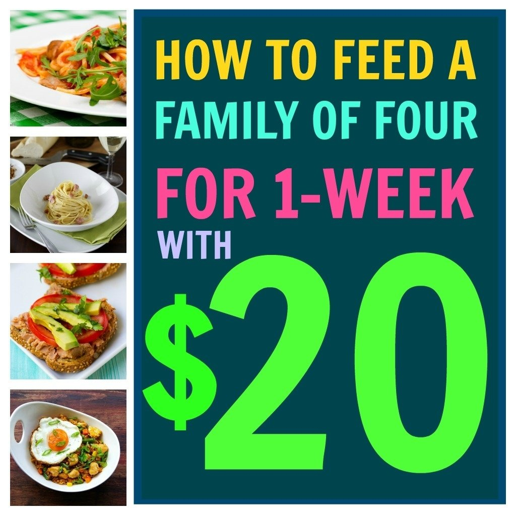 10 Fashionable Meal Ideas For Family Of 4 how to feed your family for 1 week with just 20 babble 1 2020