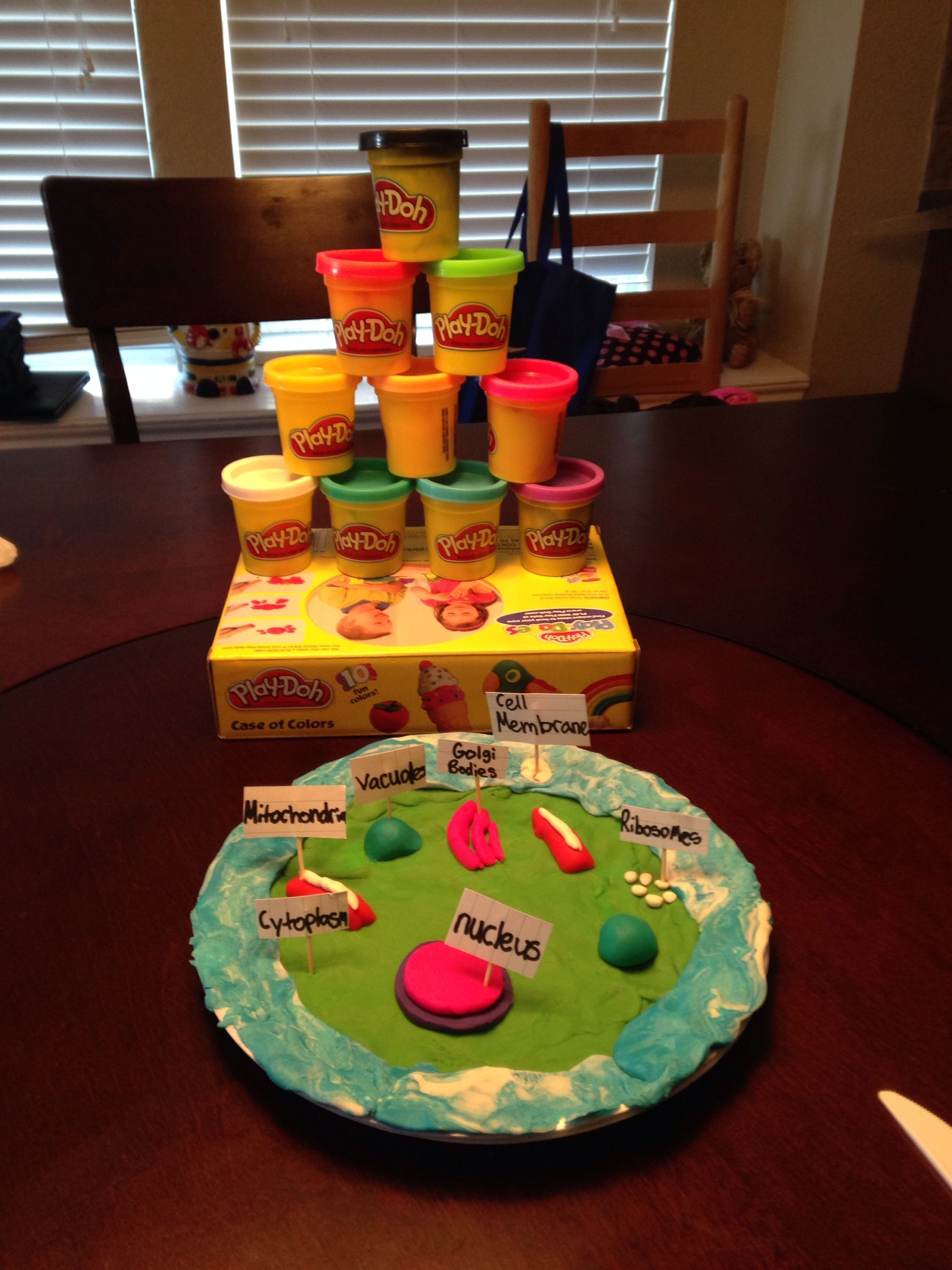 10 Famous 3D Cell Model Project Ideas how to make a animal cell model with home objects how to make a 7 2020