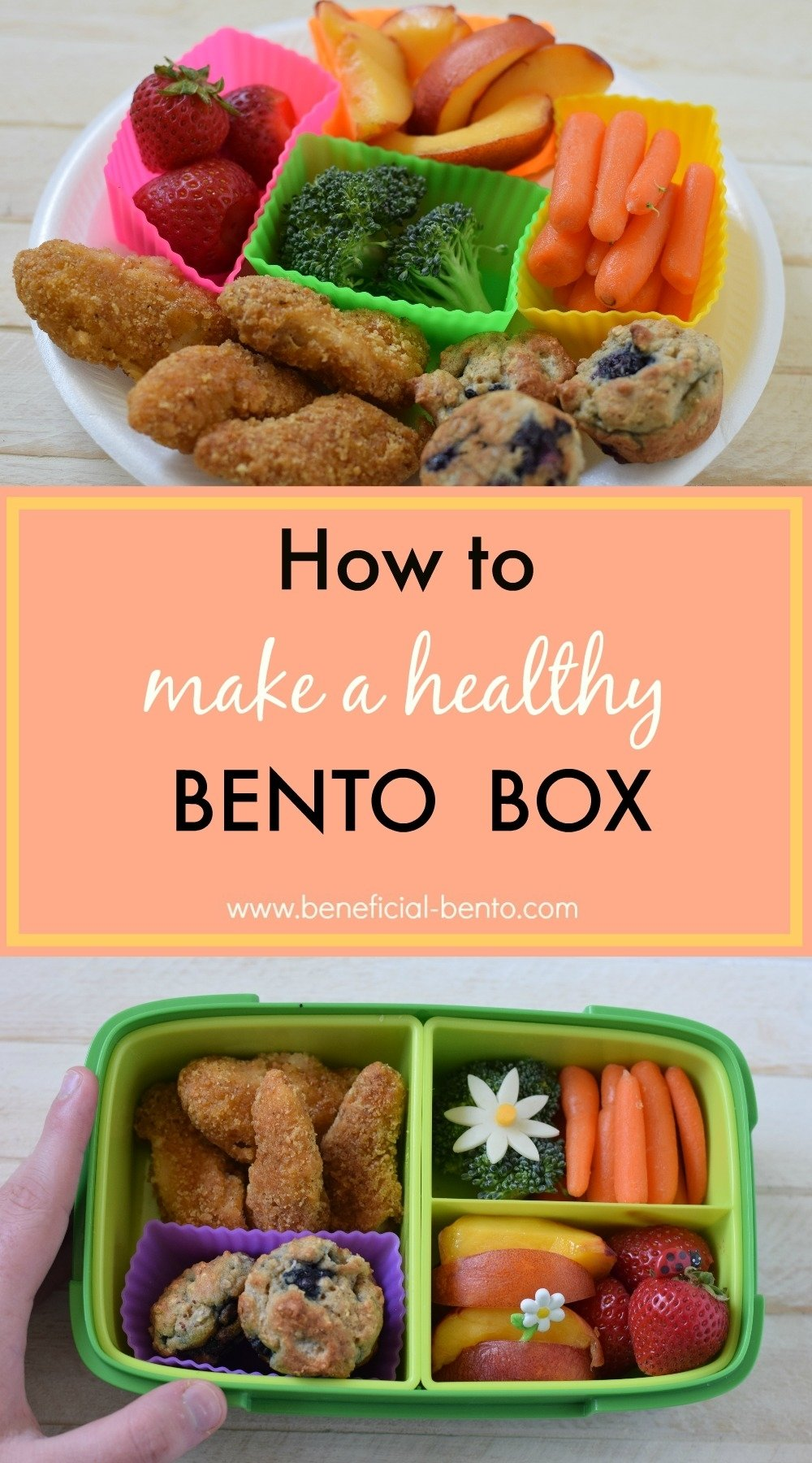 10 Nice Bento Box Ideas For Adults how to make a healthy bento box bento box bento and box 2020