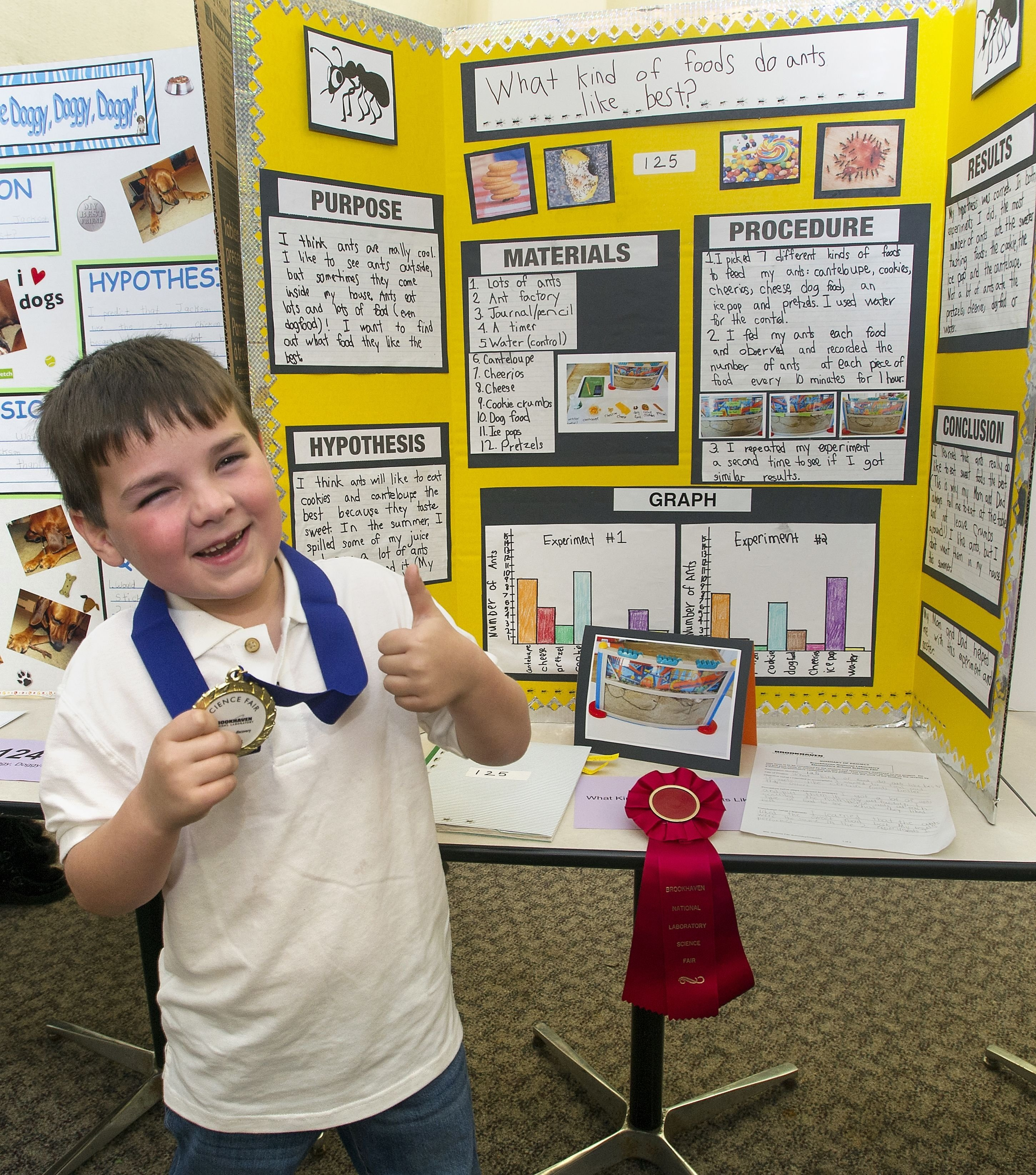 10 Fashionable Science Fair Ideas With Food ideas for reading fair projects kindergarten science fair project 1 2020