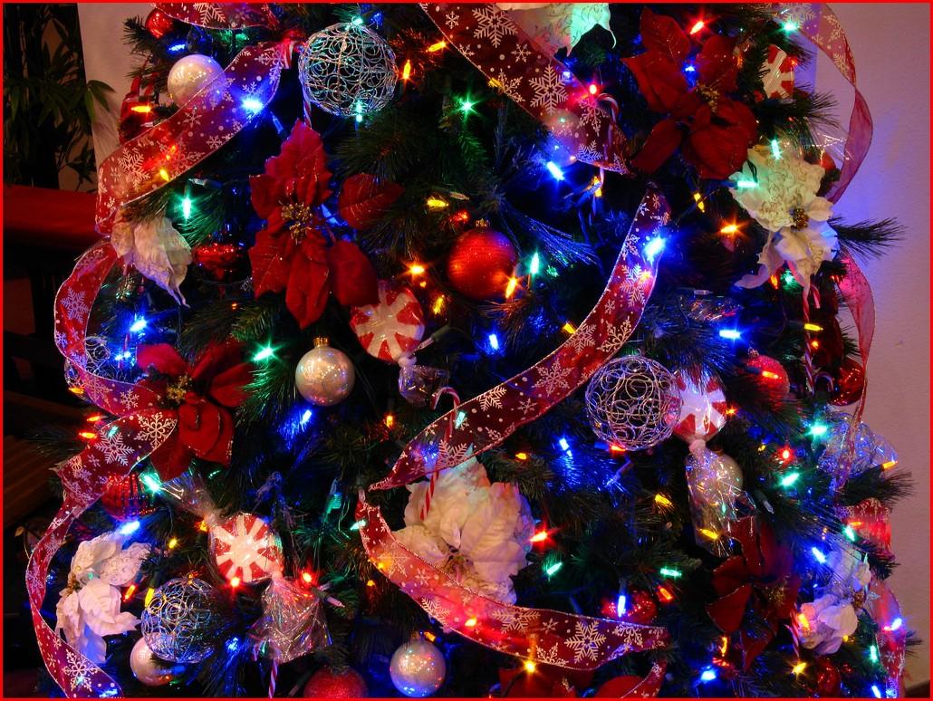 10 Elegant Christmas Tree Decorating Ideas With Multi Colored Lights image multi colored christmas tree decorating ideas 2 e280a2 ts1 2021