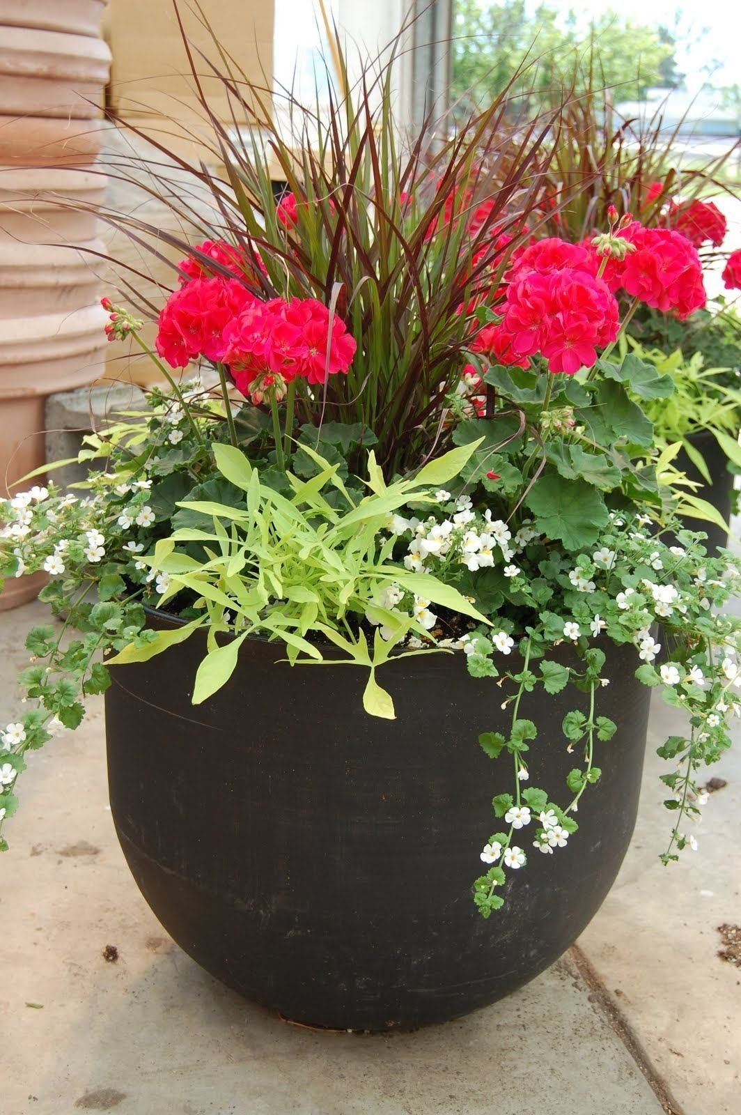 10 Nice Flower Pot Ideas For Patio images of potted plant ideas how to plant a patio pot container 2020