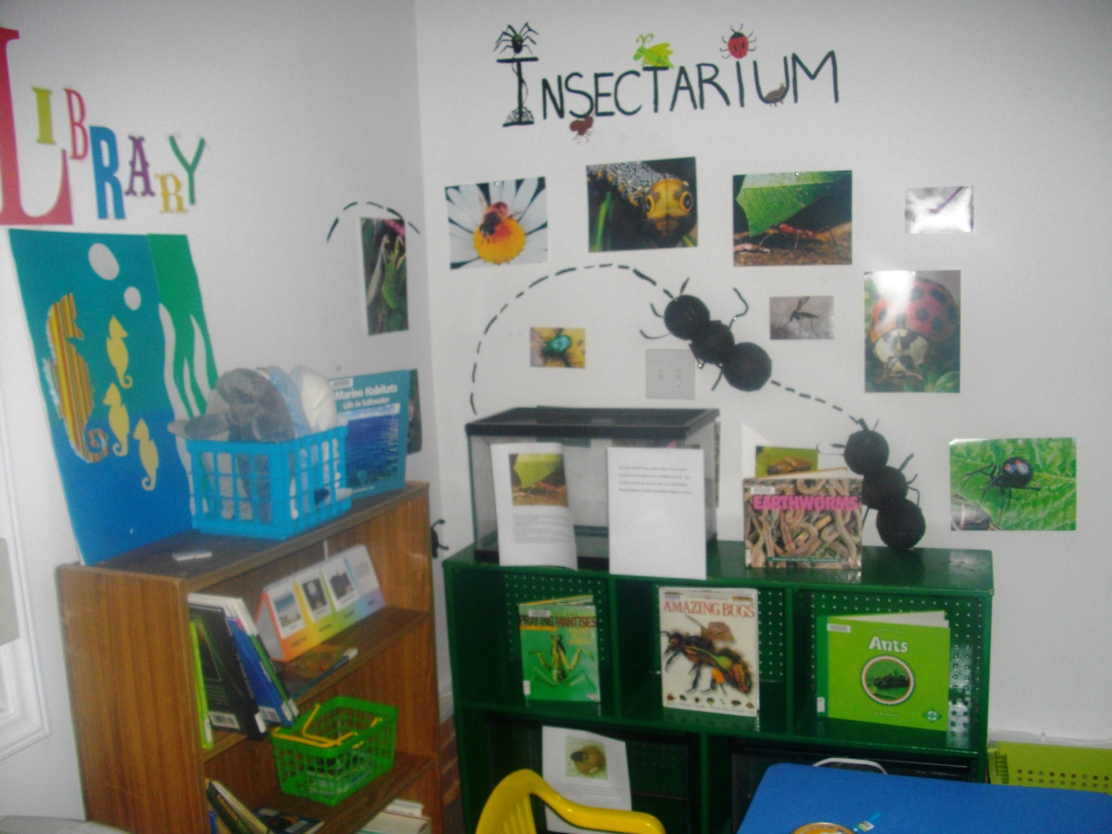 10 Pretty Dramatic Play Ideas For Toddlers insectarium for the insects i want stick insects giant cockroaches 2021