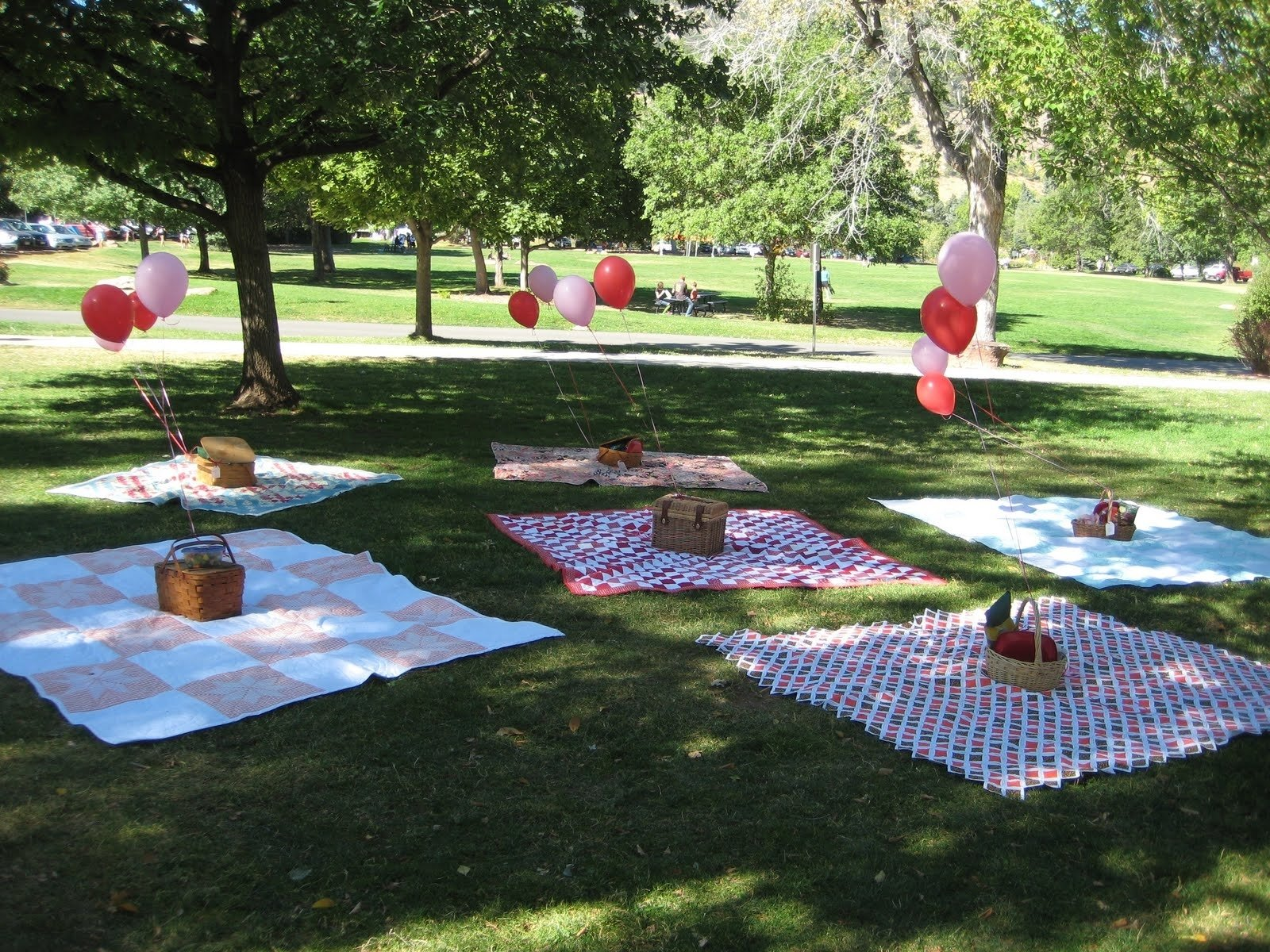 10 Trendy Picnic In The Park Ideas instead of baskets well do something else but i like the idea of