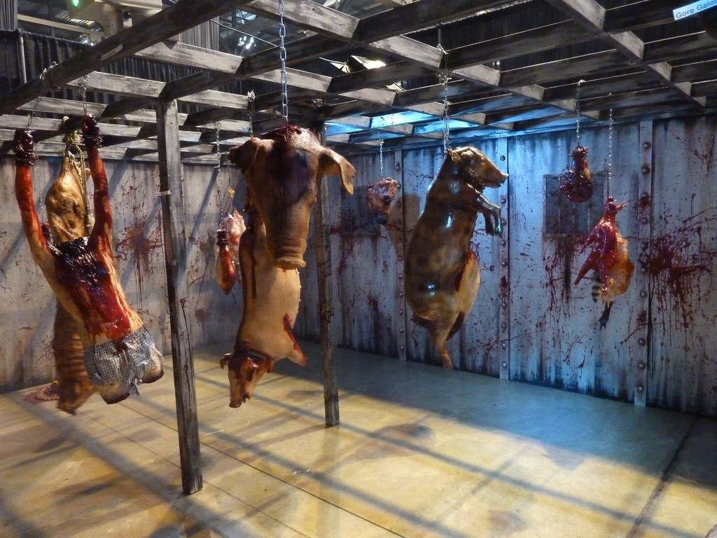 10 Attractive Haunted House Ideas For Halloween interactive haunted house at transworld haunt show flickr 2020