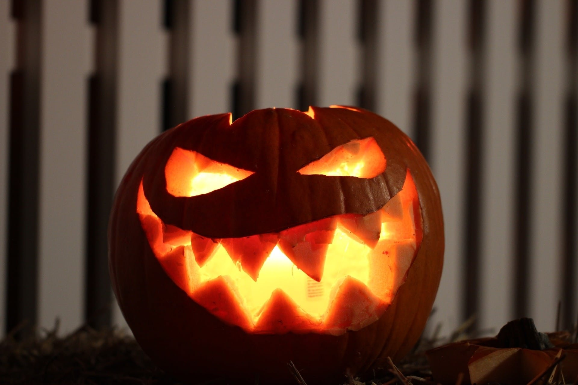 jack-o-lantern ideas for halloween | northern lights and trees
