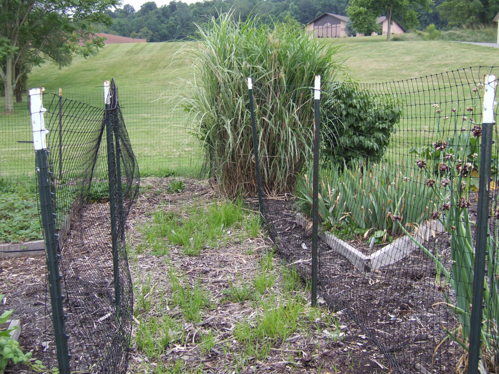 10 Fantastic Garden Fence Ideas To Keep Deer Out keeping deer out of the garden bonnie plants 2020