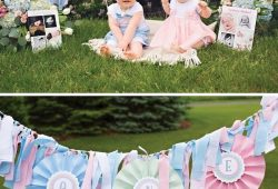 10 Lovable Twins First Birthday Party Ideas