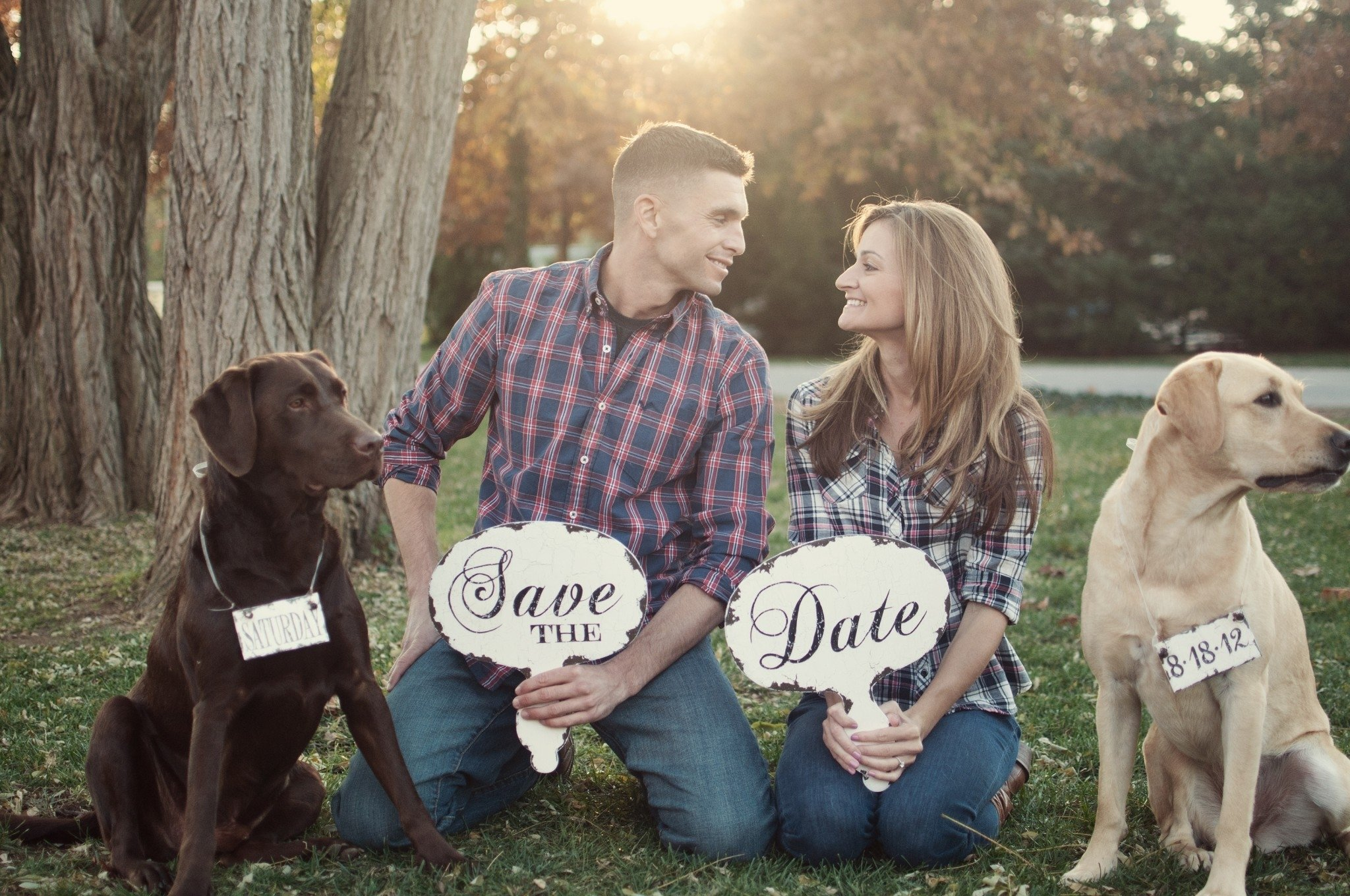 10 Nice Save The Date Ideas With Dogs labradors save the dates so cute dog wedding labrador 2020