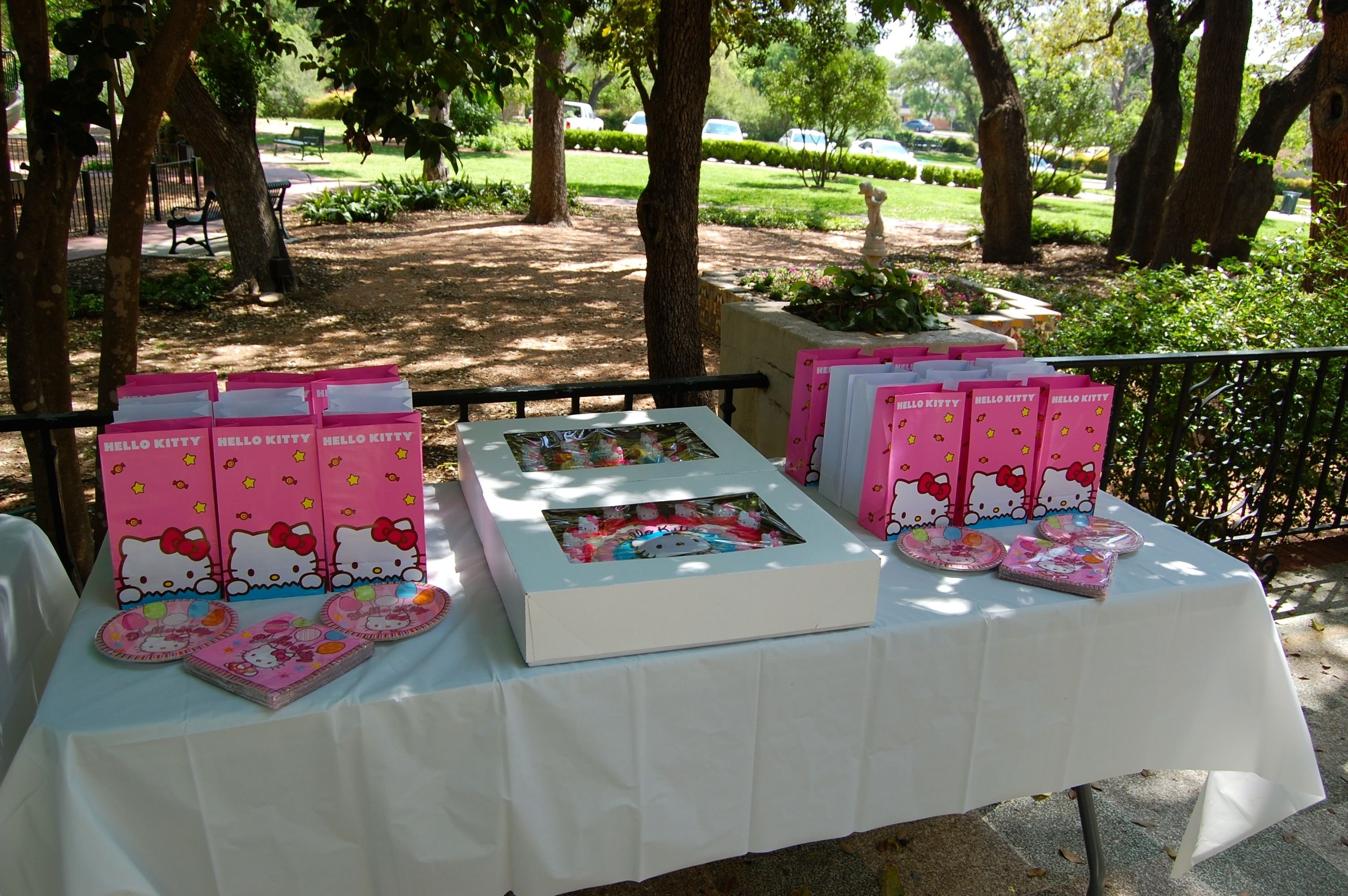 10 Stylish Birthday Party Ideas San Antonio landa library for a beautiful and affordable birthday party in the 1 2020