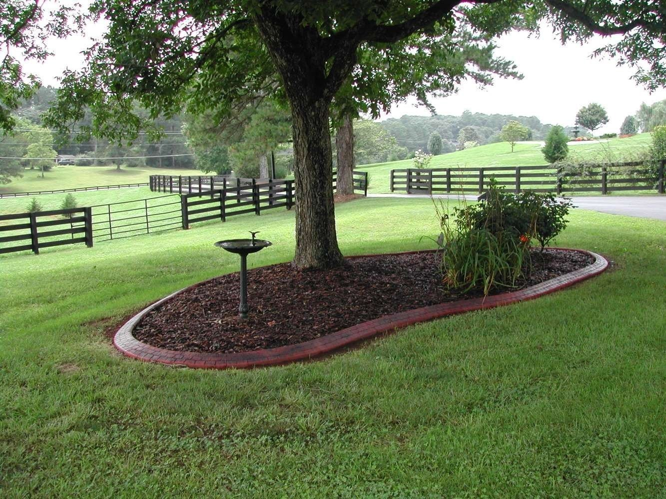 landscaping around a tree | landscape | pinterest | curb appeal